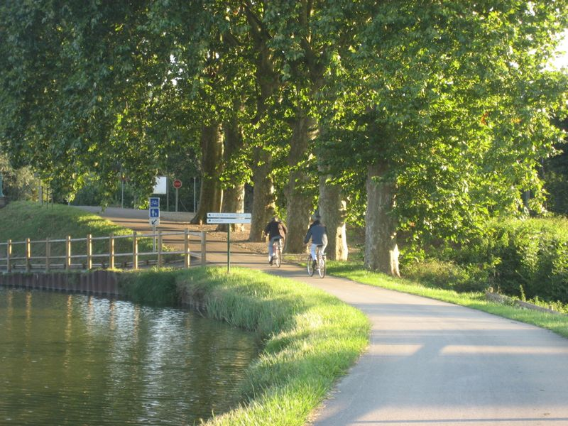 Mike and Dave DeMoney bicycling along the Canal du Centre in Burgundy