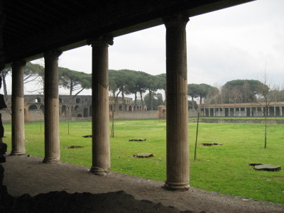 The Gymnasium with Carbonized Tree Stumps in Pompeii