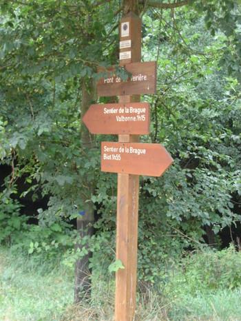 Art along the Sentier between Valbonne & Biot