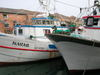 Fishing Boats in Chioggia