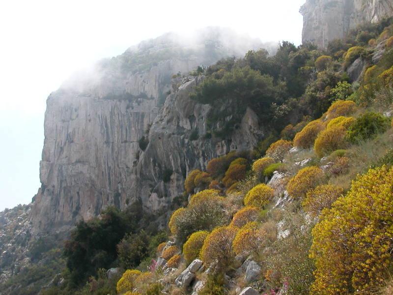 Hiking at la Tour de la Tête de Chien