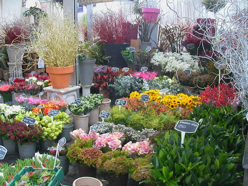 Bloemenmarkt in Amsterdam
