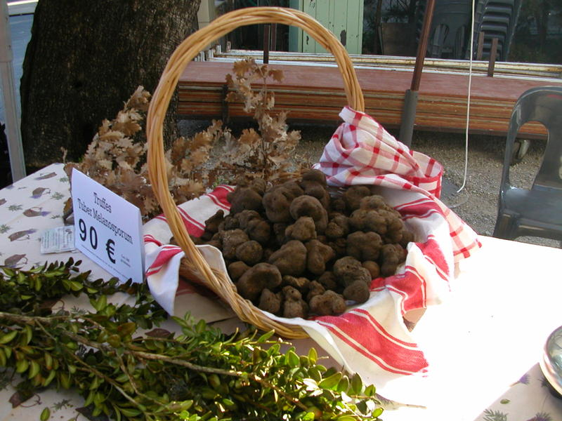 A Basket of Truffles at Le Marché de Truffes in Grasse